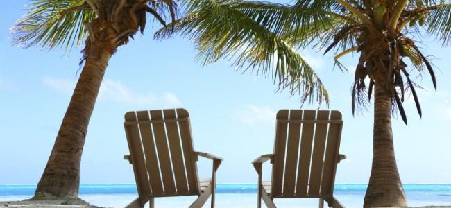 palm_reclining